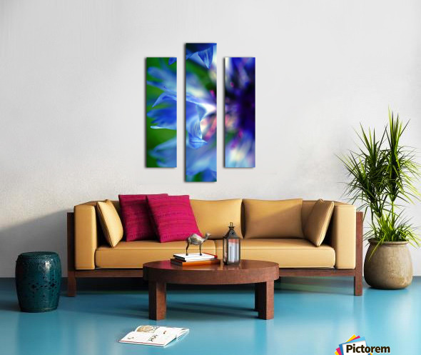 Abstract Pop Color Flower Photography 16 Canvas print