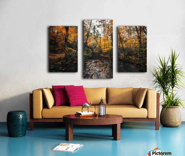 Smokey Mountain River Canvas print