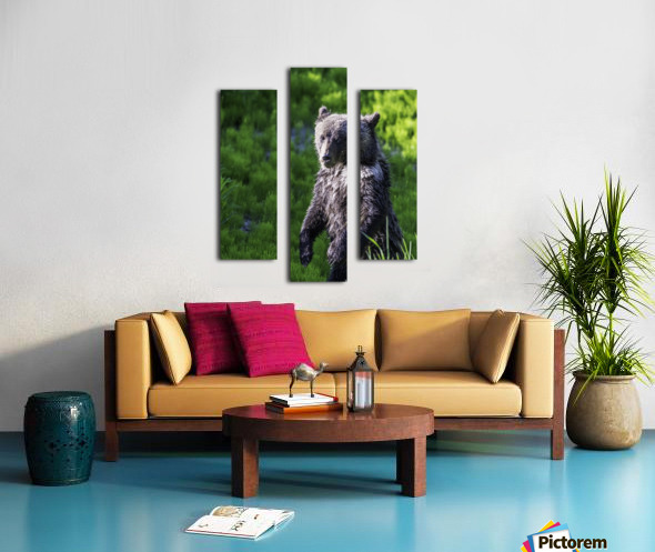 A grizzly cub named Pepper Canvas print