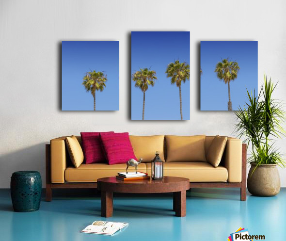 Lovely Palm Trees | Panorama Canvas print