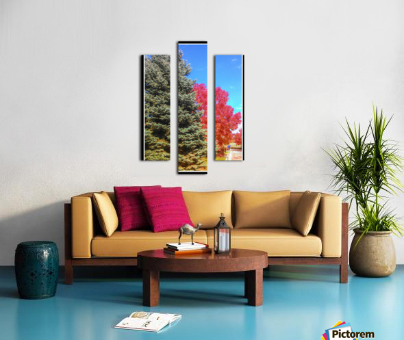 Out-side Canvas print