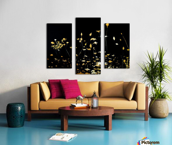 Little Chrysanthemum Canvas print