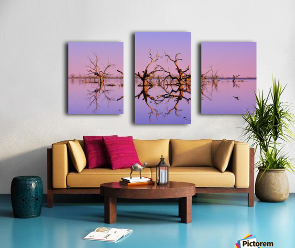Twin Reflections - Pamamaroo Lake Canvas print