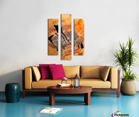 Flowering Gum Bark Canvas print