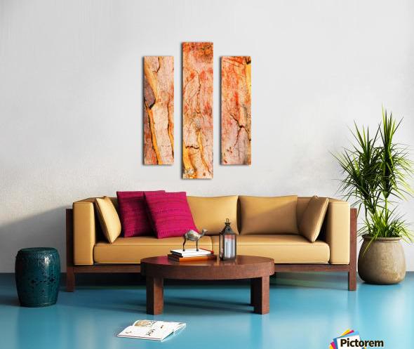 Eucalyptus Bark And Patterns Canvas print