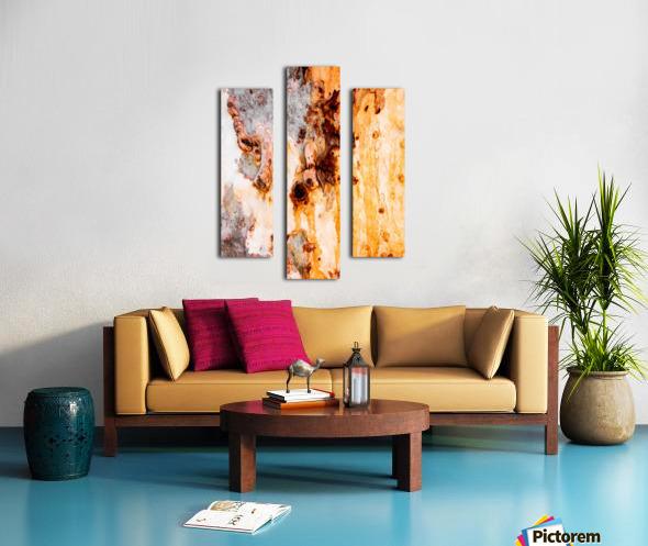 Ghost Gum Bark - 4 Canvas print