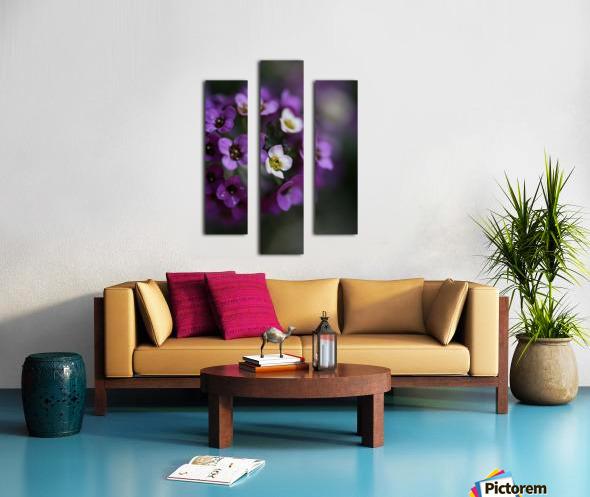 Flower Ball Allysium Flowers Canvas print