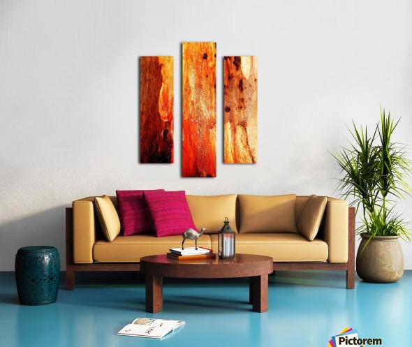 Murray Gum Tree Bark 2 Canvas print