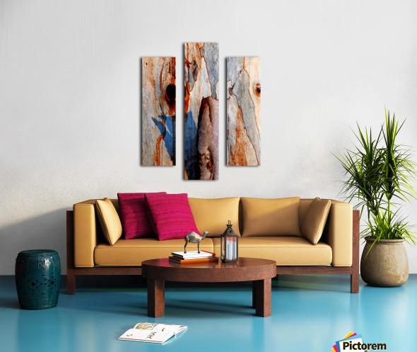 Murray Gum Tree Bark 5 Canvas print