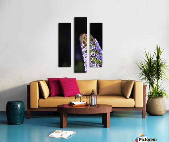 Veronica Flower Delight Canvas print