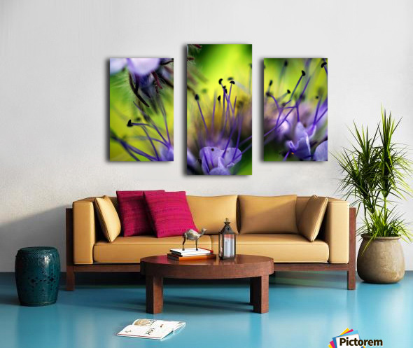 Abstract Pop Color Flower Photography 17 Canvas print