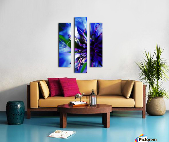 Abstract Pop Color Flower Photography 21 Canvas print