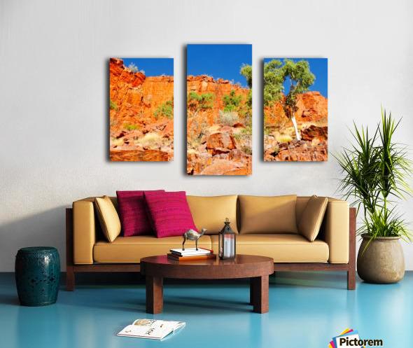 Ormiston Gorge Landscape Canvas print