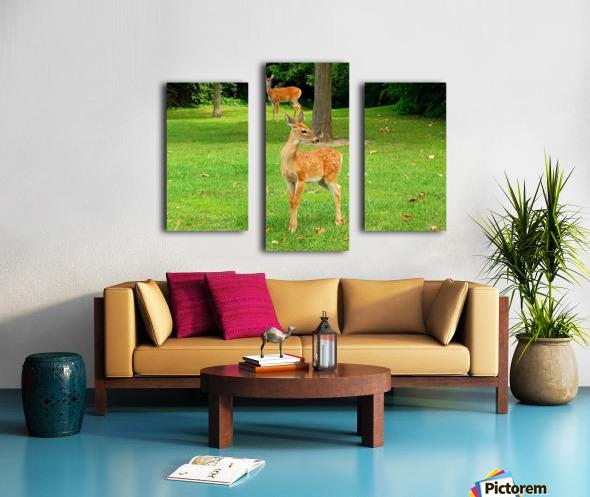 20190909_153647 Canvas print