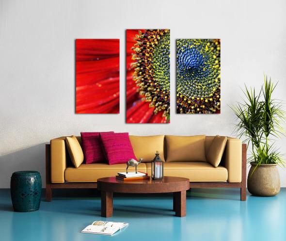 Spiral Center Of Sunflower Canvas print