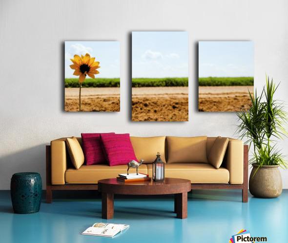 IMG_20180712_114734_227 Canvas print