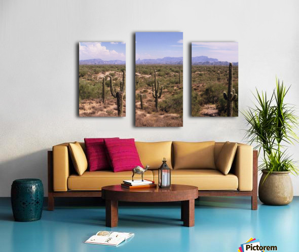 Sonora Desert Landscape Arizona Photograph Canvas print