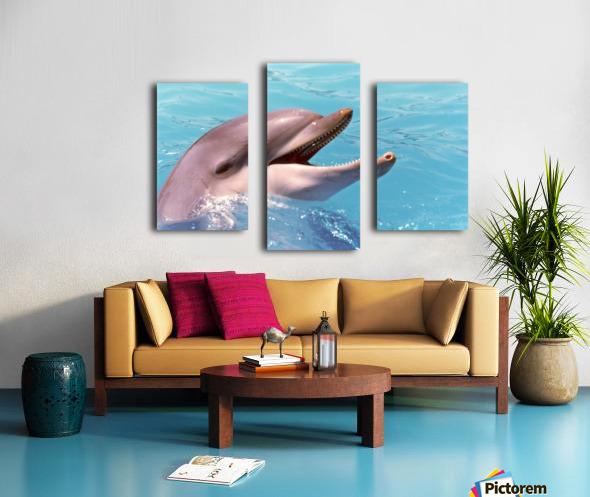 Happy Dolphin Photograph Canvas print