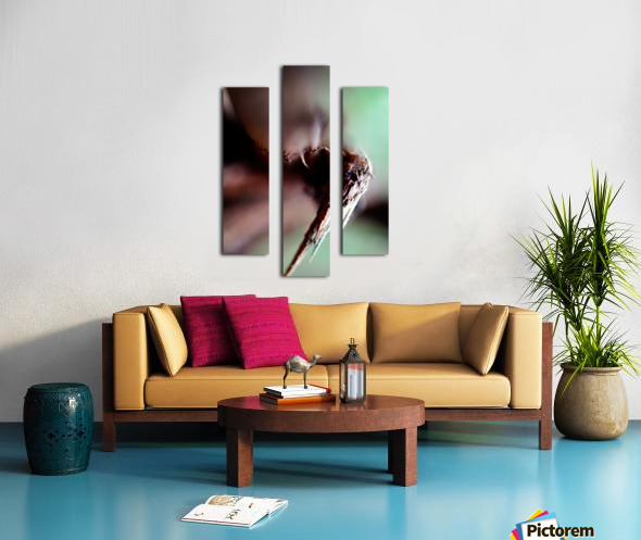 Abstract Macro Nature Photography 146 Canvas print