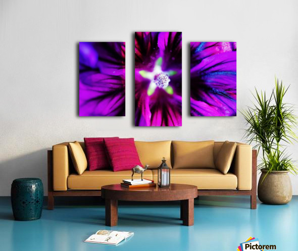 Abstract Pop Color Flower Photography 38 Canvas print