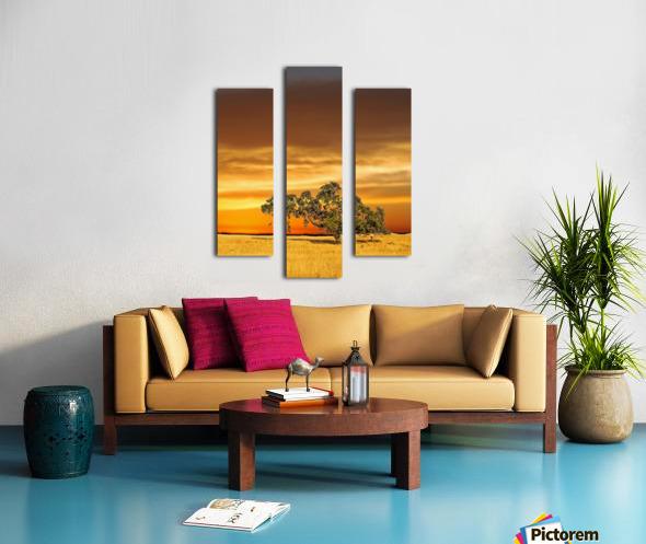 FireGold Canvas print