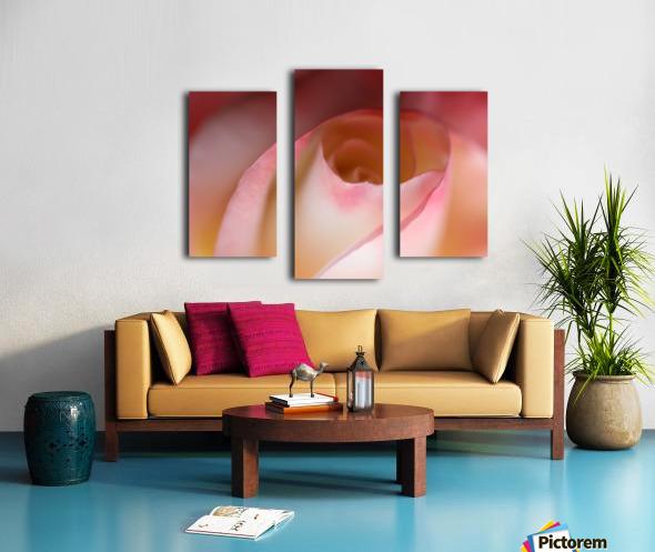 Intimate Rose Canvas print