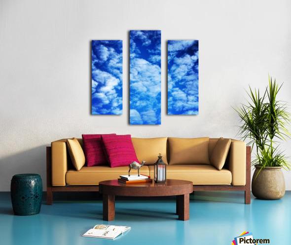 48789057208_143339dbb6_o Canvas print