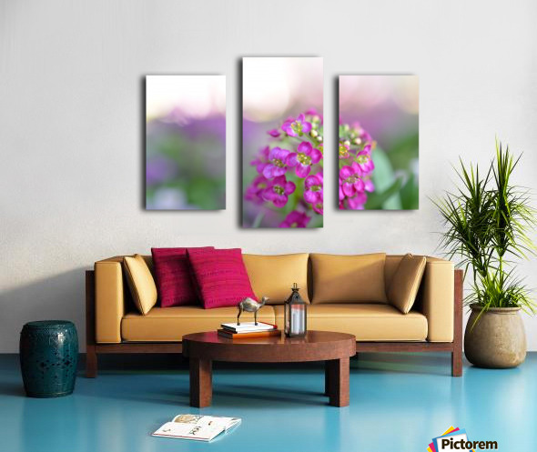 Pink Flowers Soft Photography Canvas print