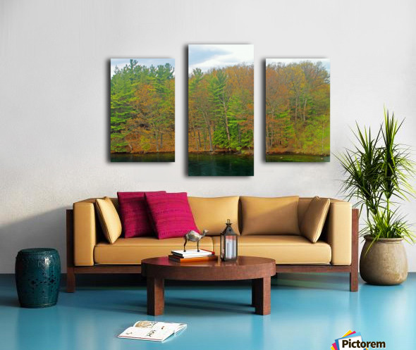 Lively Trees Canvas print