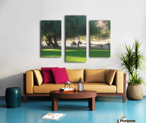 Horses at the park summertime  Canvas print