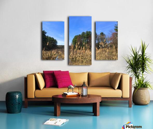 Simsbury Wetland Canvas print