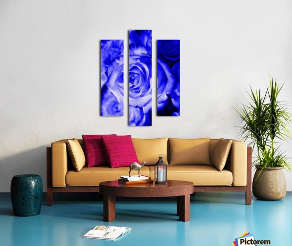Rose blue Canvas print