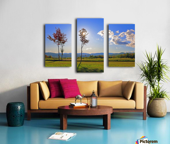 Jericho Meadow Canvas print