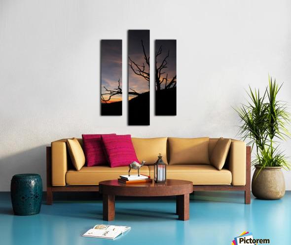 New Mexico Sunrise Canvas print
