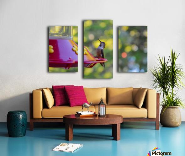 DSC_8172 Canvas print