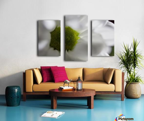 Purete Canvas print
