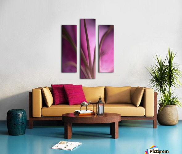 Pinky 4 Canvas print