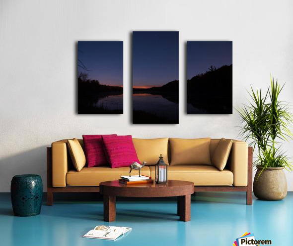Starlit Pond Canvas print