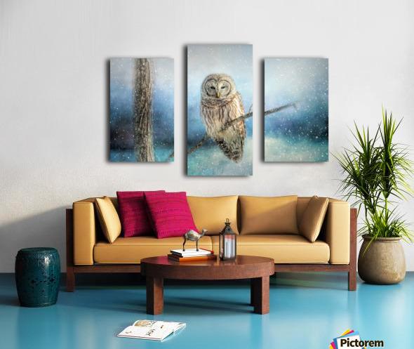 Barred Owl Solitude Canvas print