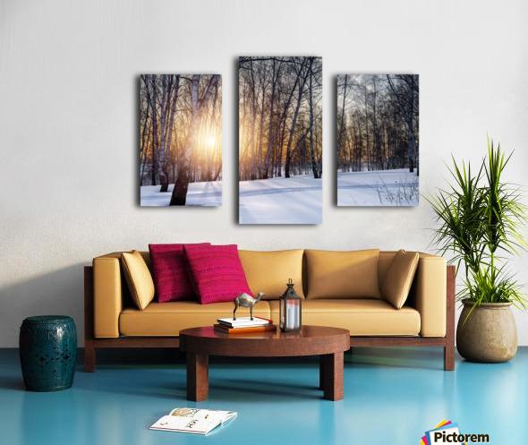 DSC_0351 10    1 Canvas print