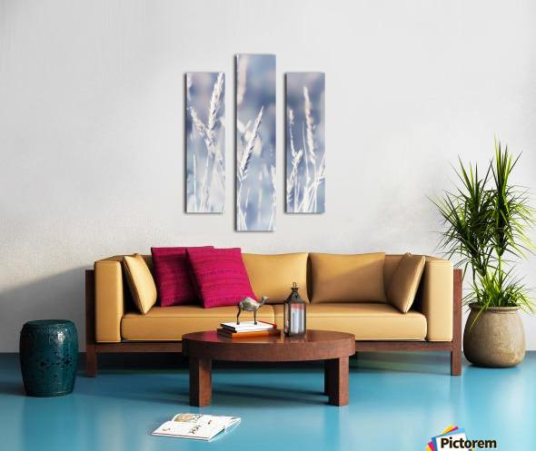Spica Canvas print