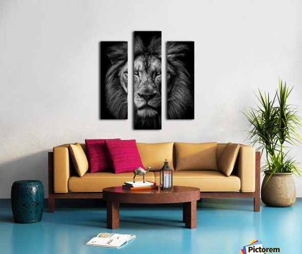 A Lion in Black & White Canvas print