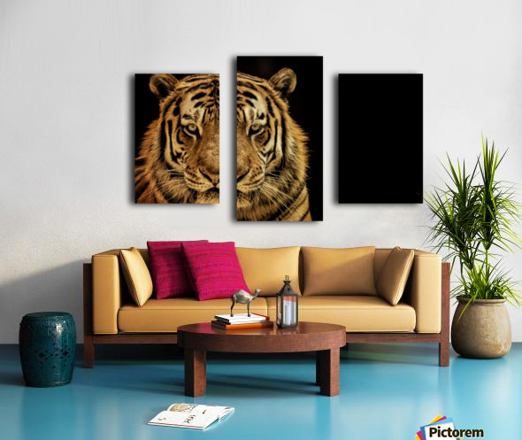 Massive Siberian Amur Tiger  Canvas print