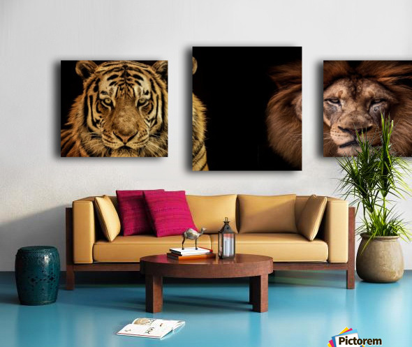 The Kings of Beasts - No Title Canvas print