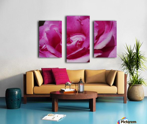 Heart Of Pink Rose Canvas print