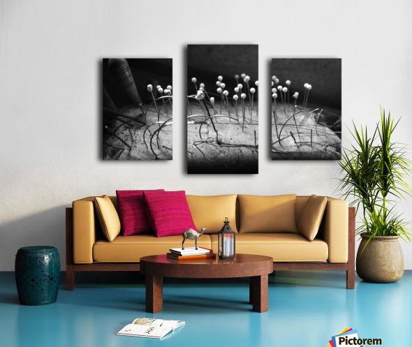 Pincushion Canvas print