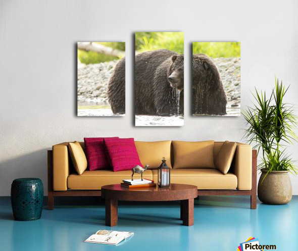 Very Wet Grizzily Canvas print