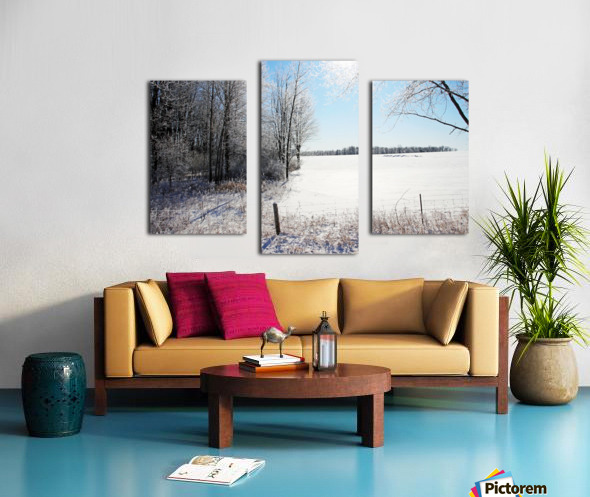 Frosty Winter Countryside I Canvas print