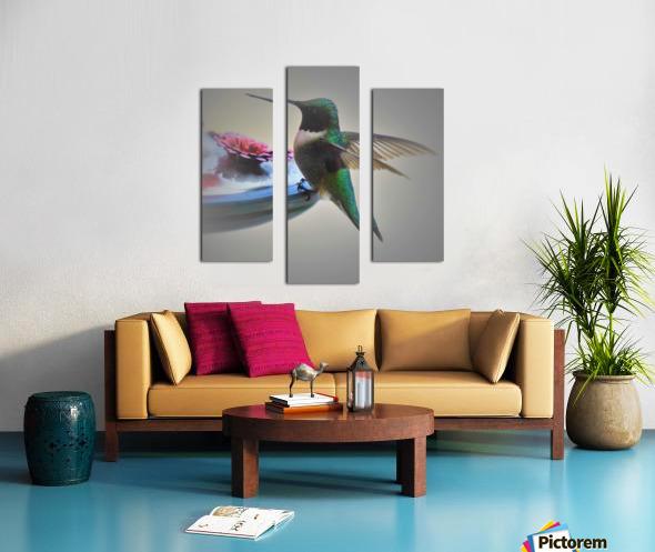 Colibris Canvas print