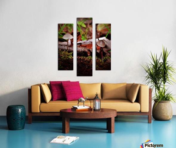 Cueillette sauvage Canvas print